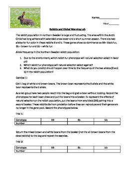 Rabbit fur and global warmng