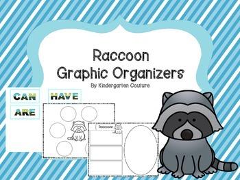 Raccoon Graphic Organizers