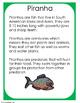 RainForest Animals Minibooks:Piranha, Sloth, Leopard, Emer