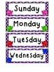Rainbow Bear Themed Calendar Set w/Days of the Week Cards!