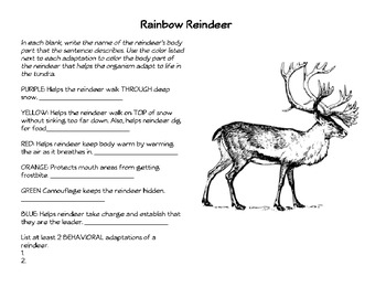 Rainbow Reindeer: Animal Adaptations