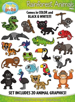 Rainforest Animals Clipart Set — Includes 40 Graphics!