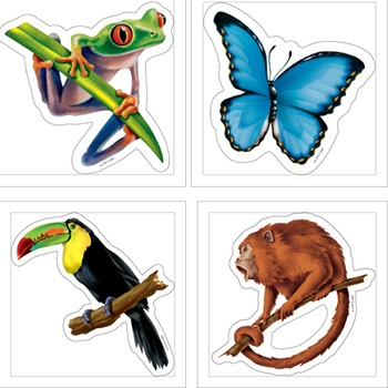 Rainforest Animals - Monkey Toucan Frog Butterfly Tapir Vulture