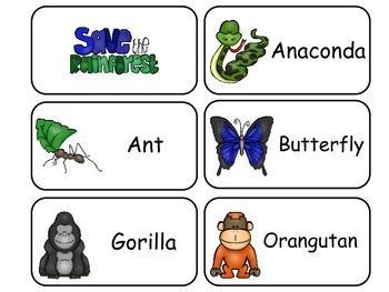 Rainforest Animals Picture Word Flash Cards. Preschool fla