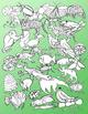 Rainforest Clip Art - Semi - Realistic - 84 clips - Color