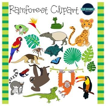 Rainforest Clipart {L.E. Designs}
