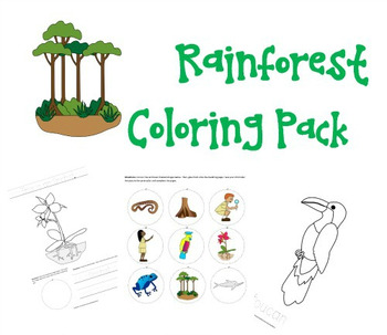 Rainforest Coloring Pack