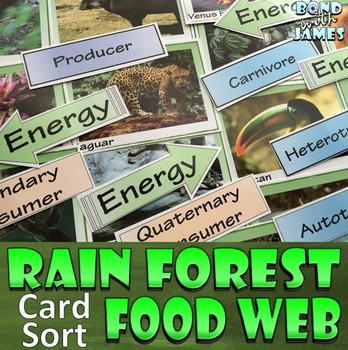 Food Chain and Food Web: Rainforest Card Sort