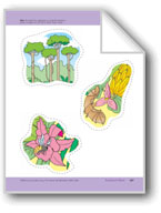 Rainforest Plants: Storyboard Pieces