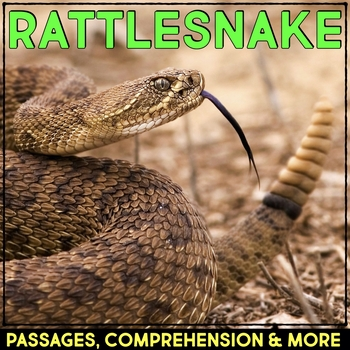 Rattlesnake: Informational Article, QR Code Research & Fact Sort