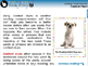 Reading Comprehension: Context Clues - MAC Gr. 3-8