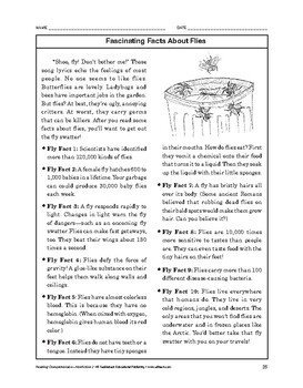 Reading Comprehension Nonfiction: Fascinating Facts About Flies