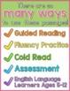 Long Vowels Reading Passages FREEBIE