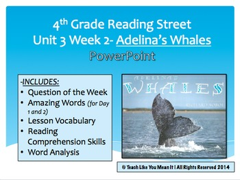 Reading Street 4th- Unit 3 Week 2 PowerPoint- Adelina's Whales
