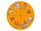 Reading Street Animal Park Math and Literacy Activities Fi