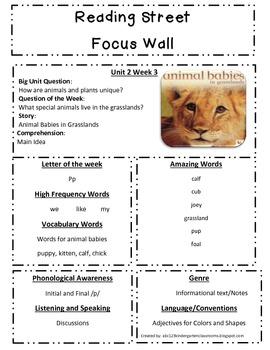 Reading Street Focus Sheet for Unit 2 Week 3 - Animal Babi