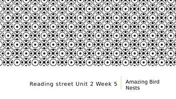 Reading Street Third Grade Unit 2 Week 5 Amazing Bird Nests