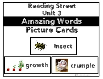 Reading Street Unit 3 Amazing Words Picture Cards- 1st Grade