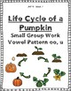 Reading Street Weekly Work Unit 4 Week 2 The Life Cycle of