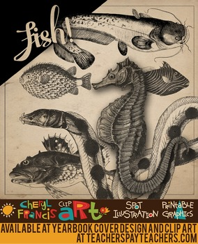 Realistic Fish Black and White Engraved Clip Art