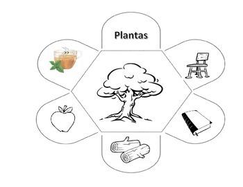 Natural resources (Spanish)