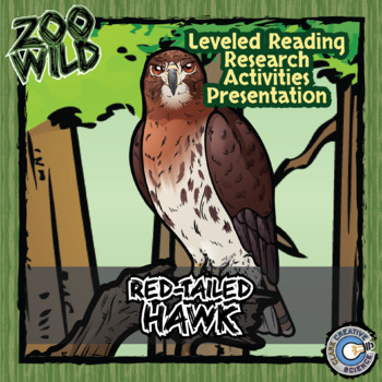 Red-Tailed Hawk -- 10 Resources -- Coloring Pages, Reading