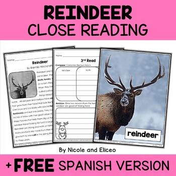 Close Reading Reindeer Activities