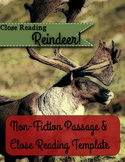 Close Reading Passage and Templates - Reindeer