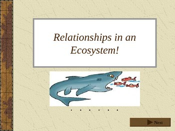 Relationships in Ecosystems