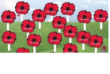 Remembrance & Veterans Day/November Attendance  (interacti