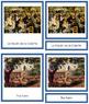 Renoir (Pierre-Auguste) 3-Part Art Cards - Color Borders