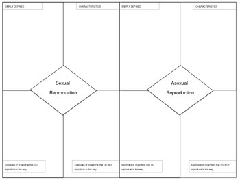 Reproductive Strategies Graphic Organizer - Asexual and Se