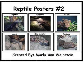 Reptile Posters #2