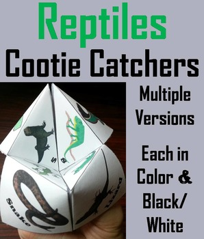 Reptiles Activity/ Foldable: Anaconda, Tortoise, Crocodile