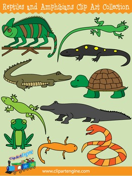 Reptiles and Amphibians Clip Art
