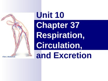 Respiration, Circulation, and Excretion