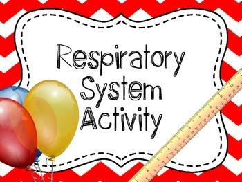 Respiratory System Investigation, Respiratory System Lab