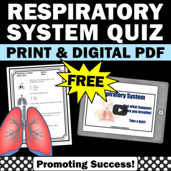 free respiratory system for kids 5th 6th grade printables activities