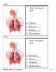 Respiratory System (Quiz)