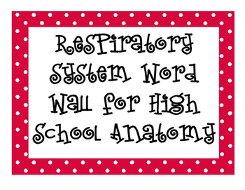 Respiratory System Word Wall for High School Anatomy