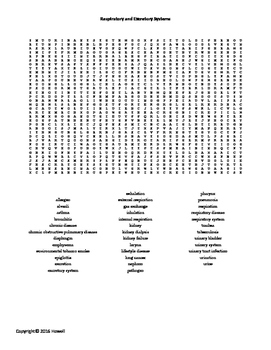 Respiratory and Excretory Systems Word Search for Middle S