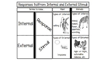 Responses to/from Internal and External Stimuli
