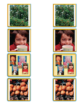 Retell Anchor Text - Journey's Lesson 18 Where Does Food C
