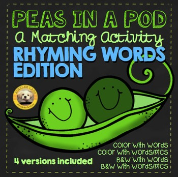 Rhyming CVC Words Visual Matching Activity Cards- 4 versio