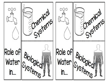 Role of Water in Chemical and Biological Systems
