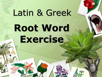 100 Root Words Dictionary Exercises