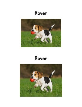 Rover; an Emergent reader