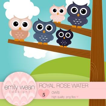 Royal Rose Water - Owl Clip Art