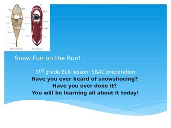 SBAC preparation 3rd grade ELA: Snow Fun on the Run!