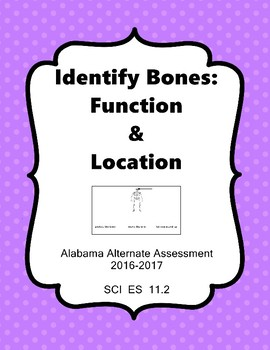 SCI ES 11.2 Identify Location and Function of Bones  AAA E